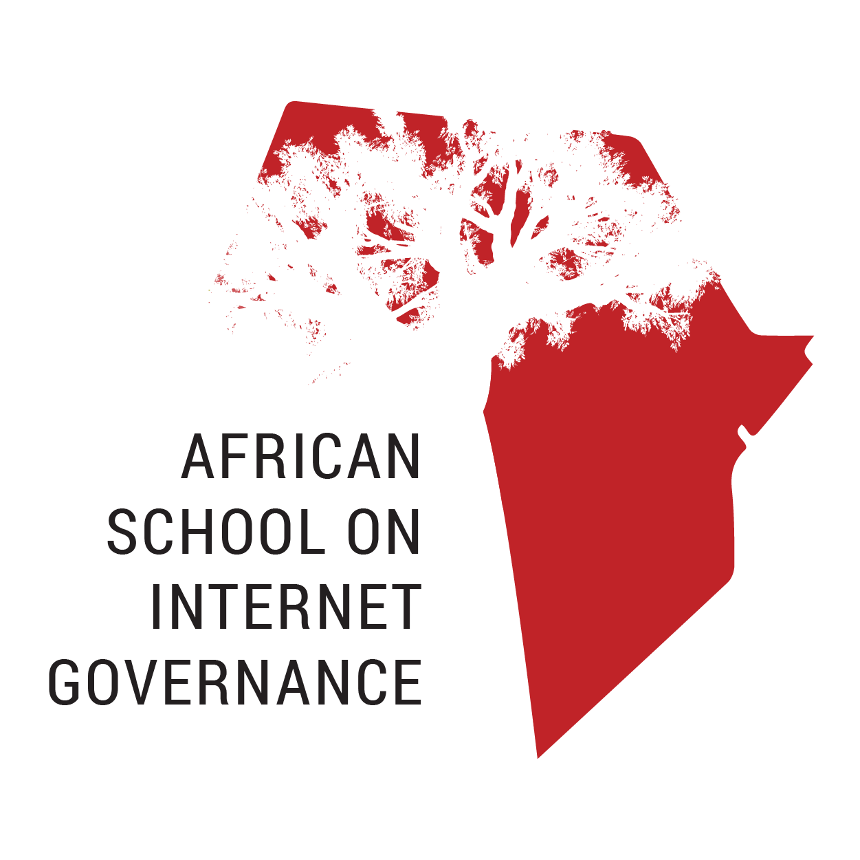 African School on Internet Governance