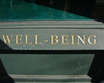 Inside the Digital Society: Digital well-being