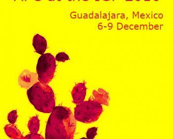 APC's priorities for the 11th Internet Governance Forum, Guadalajara, 2016