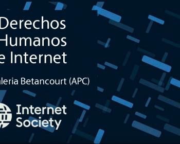 Un aporte sobre la situación de los derechos humanos en internet