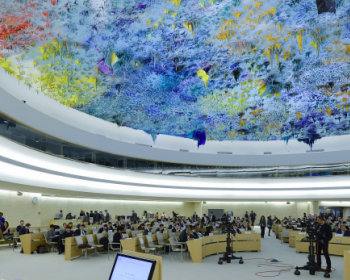 A guide to help human rights defenders navigate the Universal Periodic Review