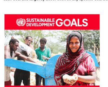 Can digital technologies accelerate the achievement of the Sustainable Development Goals?