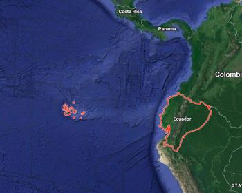 Ecuador: Tecnologías de vigilancia en contexto de pandemia ponen en riesgo los derechos humanos
