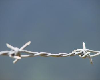 WikiLeaks: Les droits de l'homme des dénonciateurs attaqués, selon APC