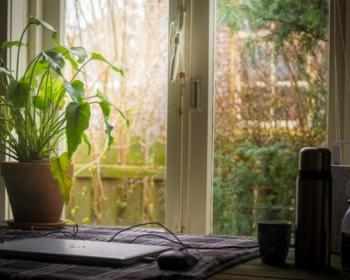 GreenNet: Tools for working from home