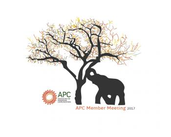 APC members meet in South Africa to craft a collaborative future