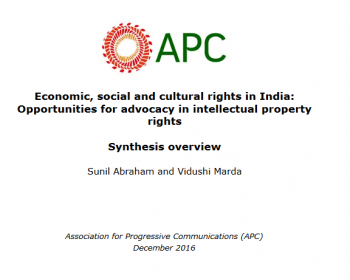 Economic, social and cultural rights in India: Opportunities for advocacy in intellectual property rights
