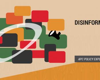 APC policy explainer: Disinformation