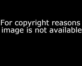 Declaración de la sociedad cIvil sobre el Día mundial de la propiedad intelectual
