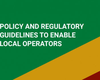 Expanding the telecommunications operators ecosystem: Policy and regulatory guidelines to enable local operators