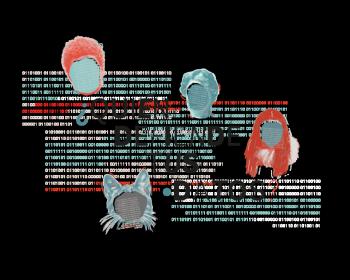 Derechos Digitales: ¿Quién defiende tus datos?