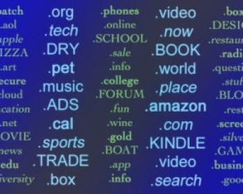 The internet domain name system and the right to culture