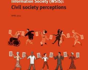 APC Survey WSIS