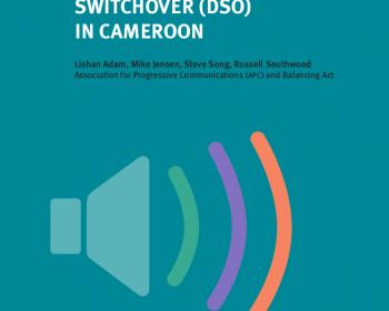 Guide to Cameroon DSO