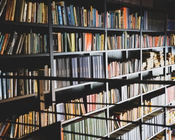 Inside the Information Society: What about books?