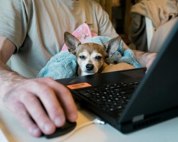 Inside the Digital Society: Is homeworking working?