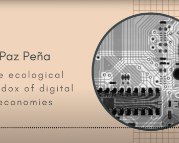 The ecological paradox of digital economies: A conversation between Paz Peña and Joey Ayoub