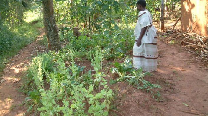 Photo: Female telecentre user from rural Uganda.