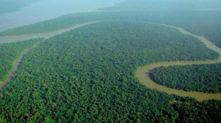 Imagen: Vista aérea de la selva amazónica, por lubasi a través de Wikimedia Commons.
