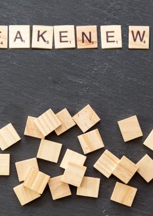 """Carta abierta de representantes de la sociedad civil de LAC expresa preocupaciones sobre el discurso alrededor de """"noticias falsas"""" y elecciones"""