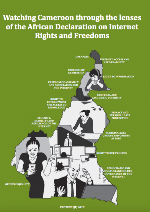 Watching Cameroon through the lenses of the African Declaration on Internet Rights and Freedoms