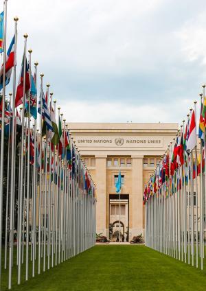 Lettre de la societé civile adressée aux organes conventionnels et au Haut-Commissariat des Nations unies aux droits de l'homme