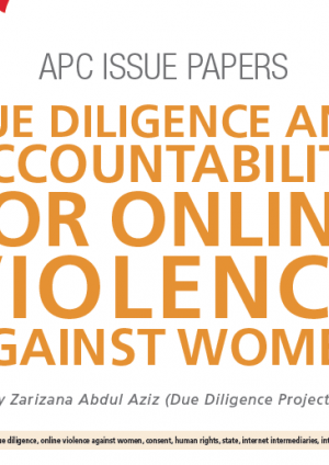 Due diligence and accountability for online violence against women