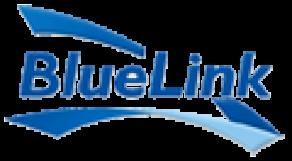 BlueLink Information Network