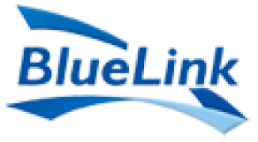 BlueLink Information Network